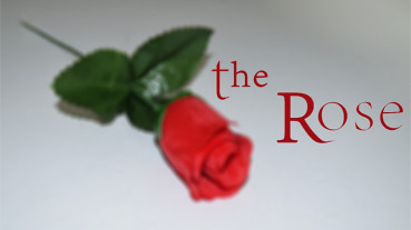 The Rose by Sandro Loporcaro (Amazo) - Video - DOWNLOAD