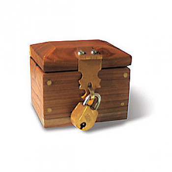Lock Box Mini Deluxe - Zaubertrick