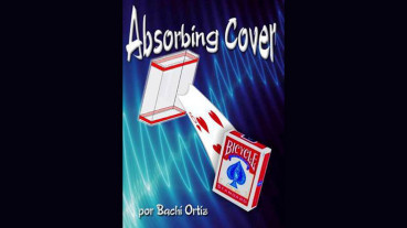 Absorbing Cover by Bachi Ortiz - Video - DOWNLOAD