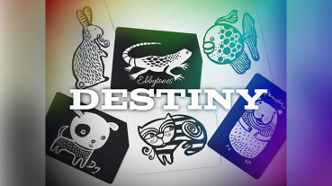 Destiny by Ebbytones - Video - DOWNLOAD
