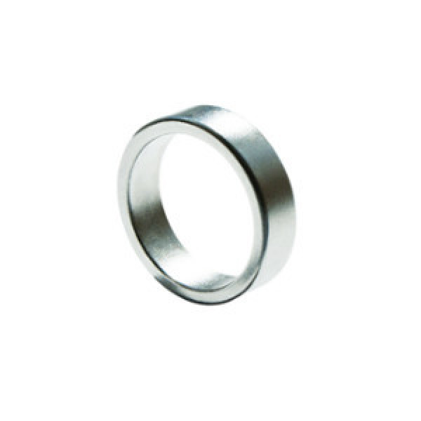 PK Ring - Magnetring Flach - 19mm - Silber