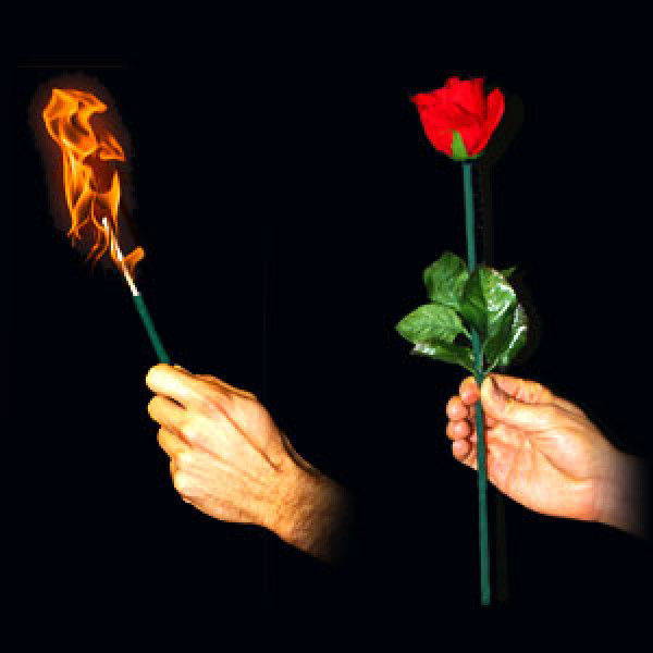 Torch to Rose - Professional - Zaubertrick